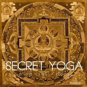 VA - Secret Yoga (2014)