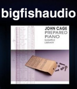 Big Fish Audio John Cage Prepared Piano MULTIFORMAT