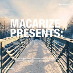 Macarize Winter Picks (2016)